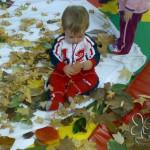 Pensieri e colori d'autunno: di blog in blog