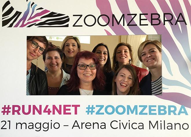 Zoom Zebra