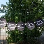 Party kit macchinine: una festa semplice all'aperto